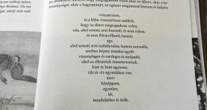 hamvas_bela_8