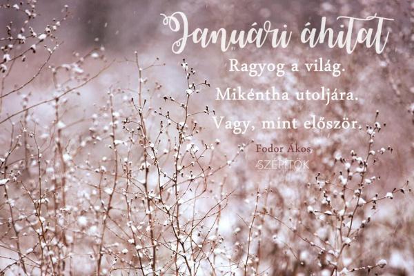 fodor_akos_januari_ahitat