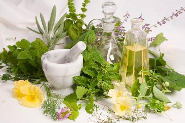 Gyógynövények tartósítása