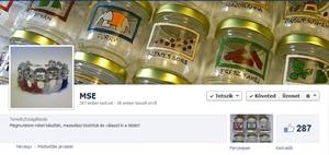 MSE Facebook
