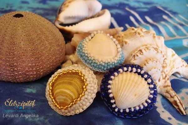 Kagyló gyöngyös