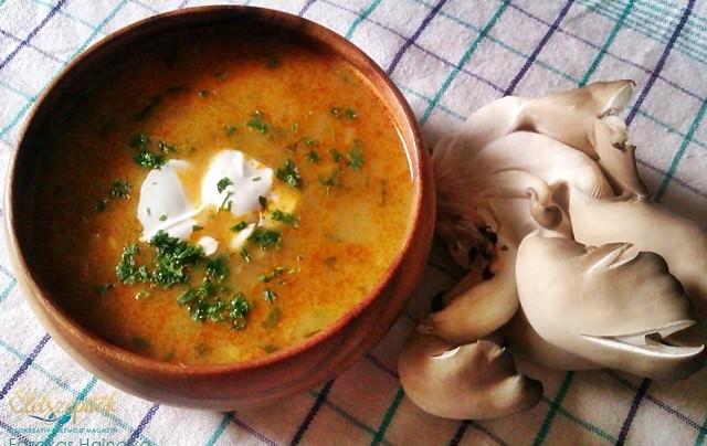 Zöldséges laskagomba leves