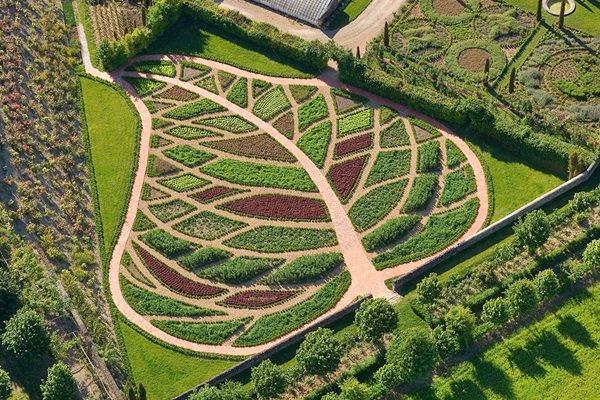 Francia kert