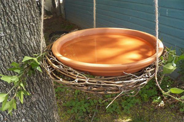Madárbarát kert: készítsünk itatót, fürdőtálat a madaraknak!