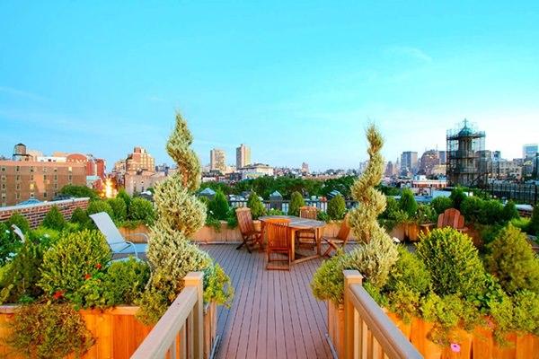 New York tetőkert