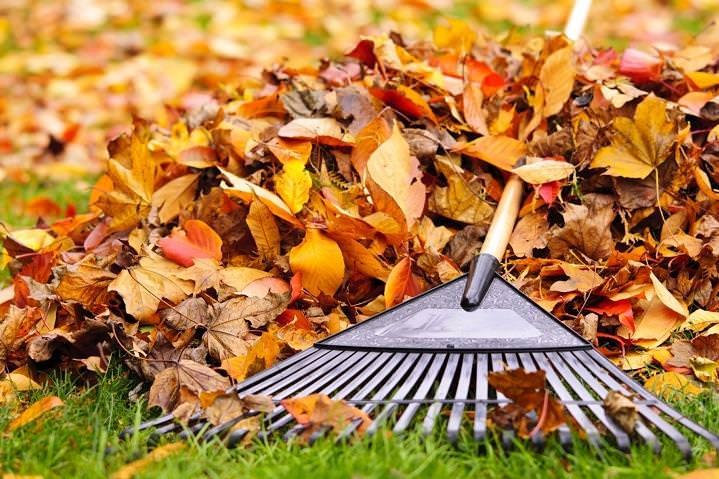 Kert falevél gereblye ősz