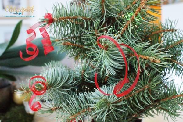 Mini karácsonyfa