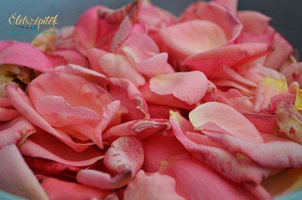 Rózsaszirom levendula