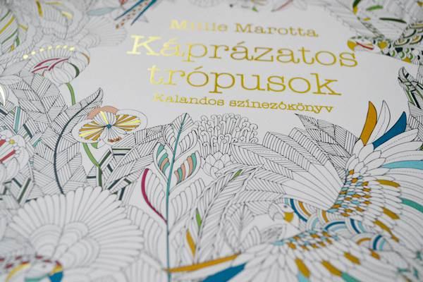 Színező könyv