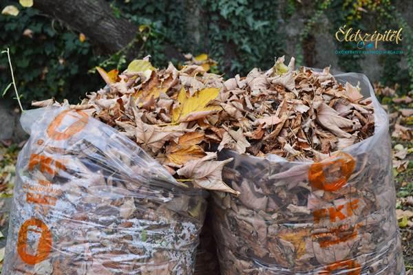 Zöldhulladék ősz falevelek