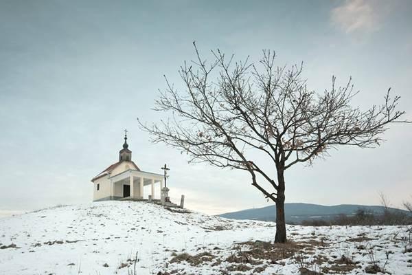 Tóth Csaba fotó