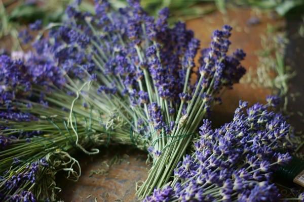 lavenderwreath1a