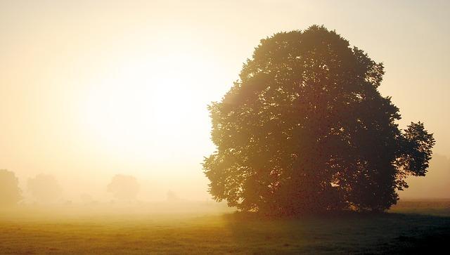 autumn-996009_640