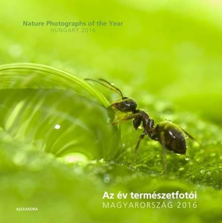 az-ev-termeszetfotoi-2016_b1