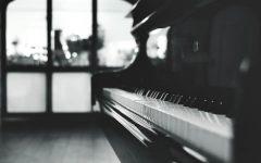 zongora600