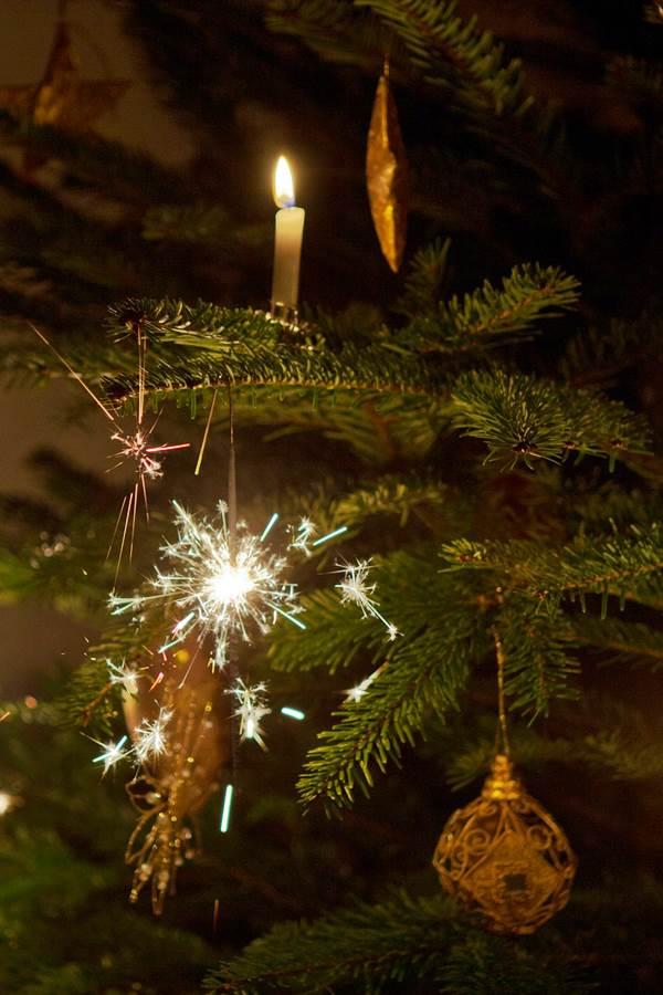 christmas-tree-600