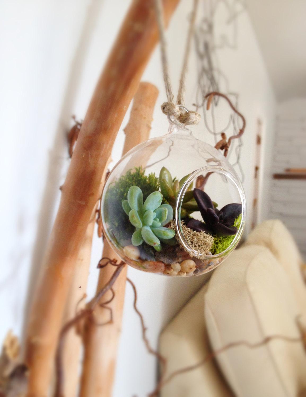 plantsinmind_etsy1