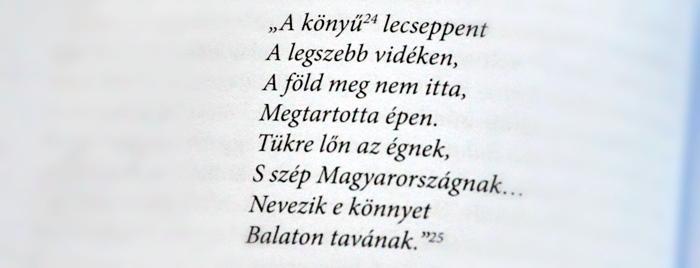 regi_balaton_konyv4