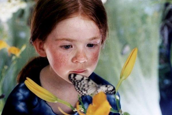 Pillangó társkereső weboldal