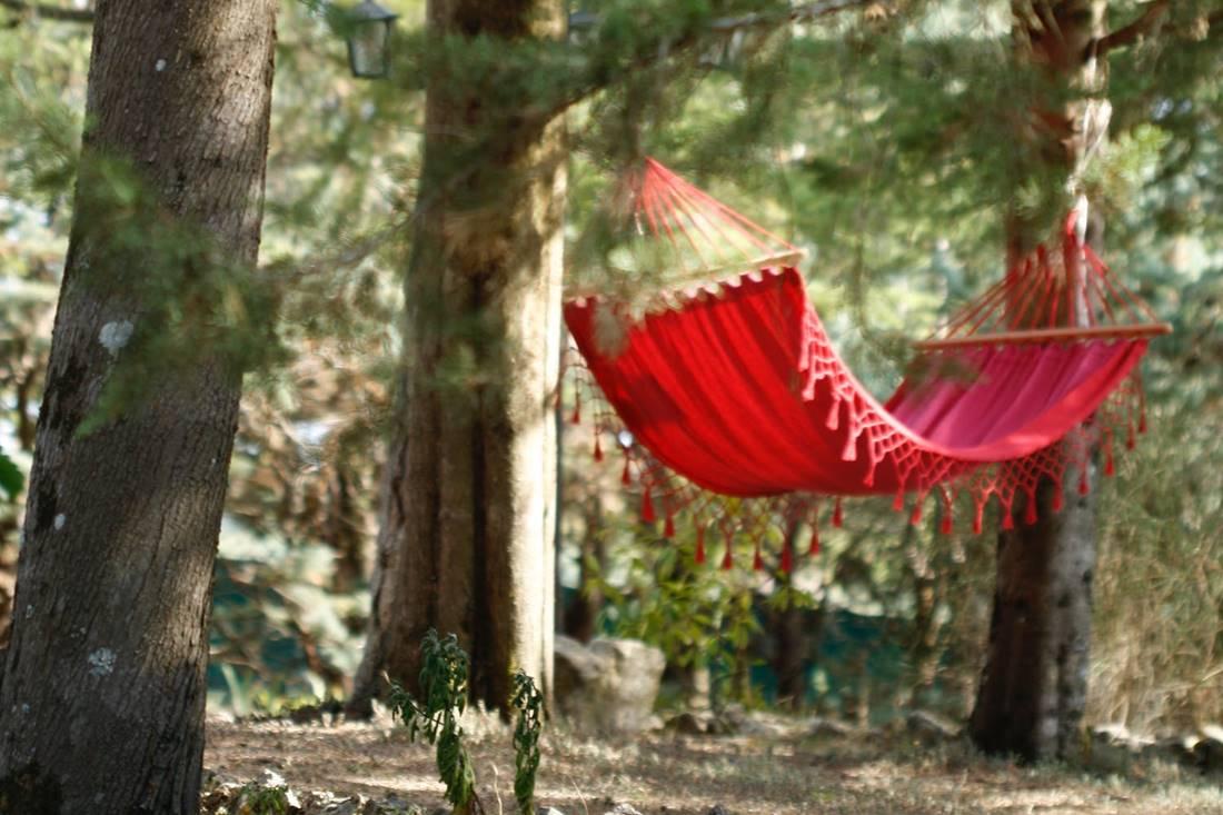 """A relaxációtanulás az önalakítás legcsodálatosabb útja. Pszichofitness. Kacagás, kocogás, lazítás. Bagdy Emőke népszerű klasszikusa """"újratöltve"""""""
